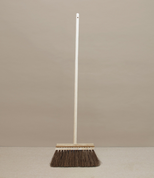Swedish broom
