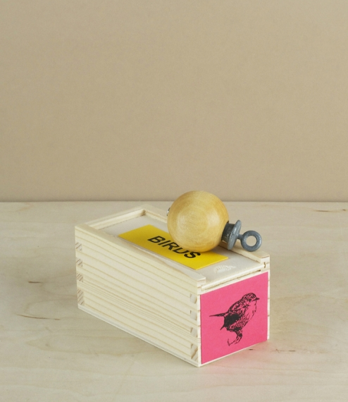 Robin warbler
