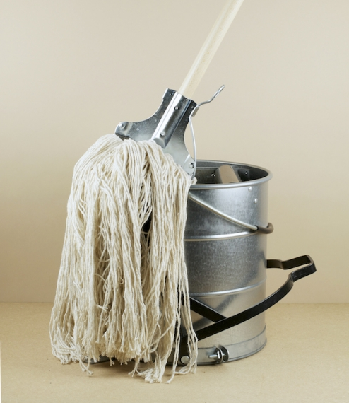 Kentucky Mop And Bucket