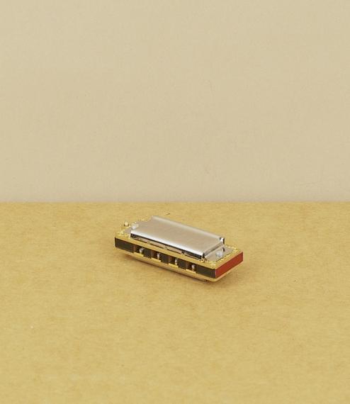 Little lady harmonica