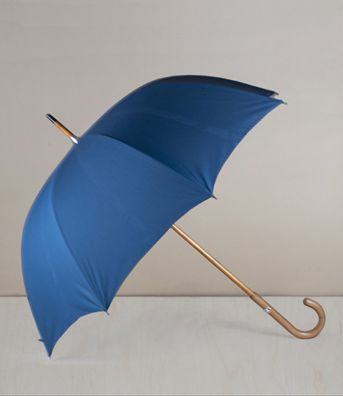 French fit-up umbrella-parasol, canard