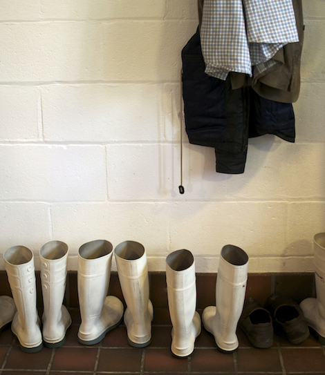 White wellies in the Botton Creamery boot room.