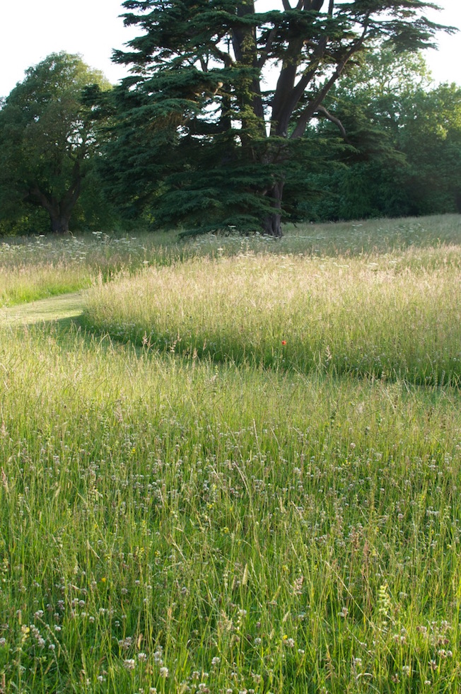 Dan Pearson's Arts and Crafts inspired meadow on the grounds of Compton Verney